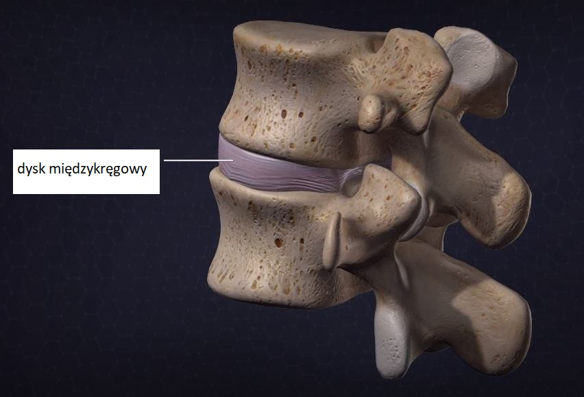 ostry ból kręgosłupa - Dlaczego ostry ból kręgosłupa dotyka głównie młode osoby?
